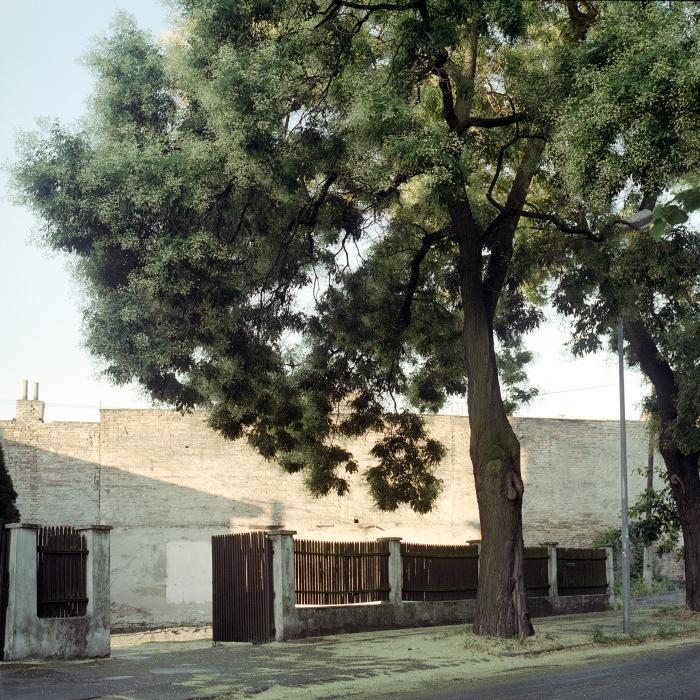 stromfinal
